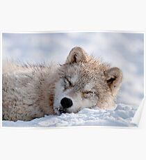 I lay my head down to sleep Poster