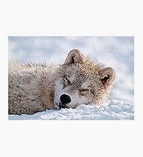 I lay my head down to sleep Photographic Print
