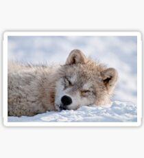 I lay my head down to sleep Sticker