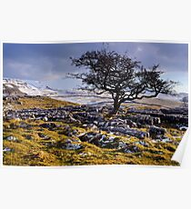 Limestone Country - The Yorkshire Dales Poster