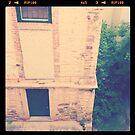 looking outside my bedroom window... by Jenna Harder