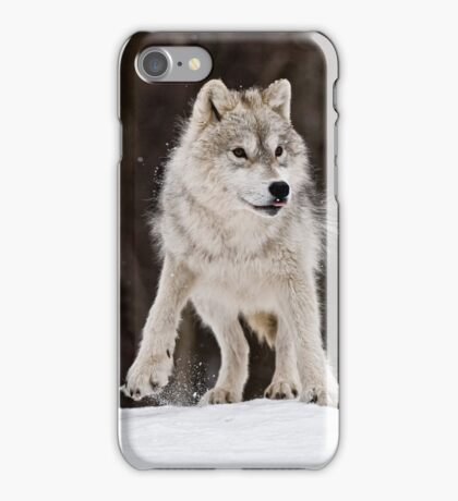 Arctic Wolf in Snow iPhone Case/Skin