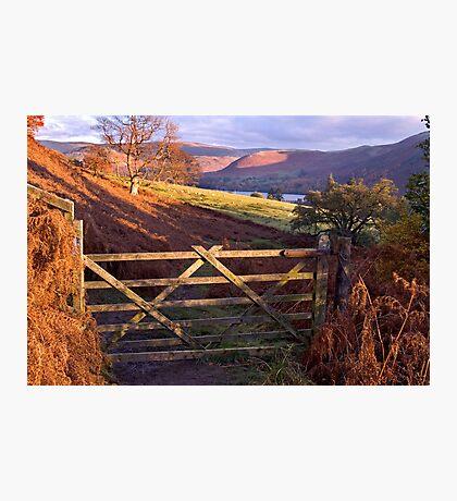 Near Ullswater - The Lake District Photographic Print