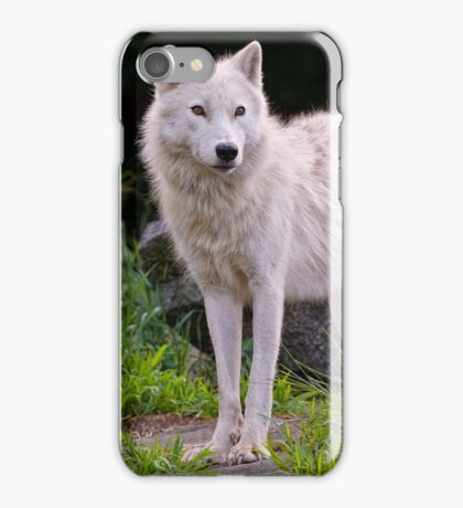 Arctic Wolf on Rocks iPhone Case/Skin