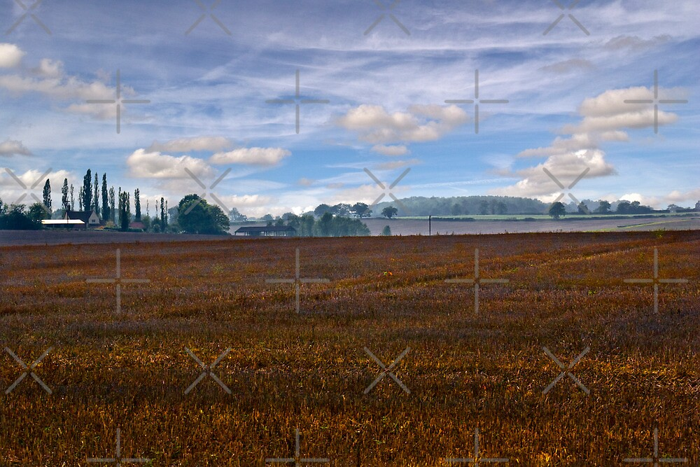 Suffolk Landscape by Geoff Carpenter