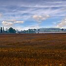 Suffolk Landscape by Geoff Carpenter