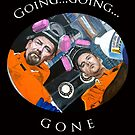 Going, Going, GONE by Tom Roderick