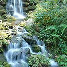 Rainbow Springs Waterfall by Scott Kennelly