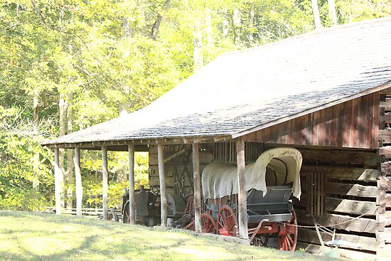 Covered Wagon  by loriwellsphoto