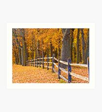 FENCE IN THE GOLDEN WOOD Art Print