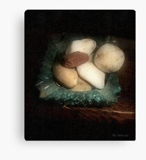 Rocks and Dust Canvas Print