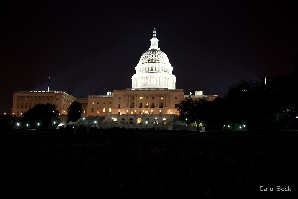 U S Capital Building by Carol Bock