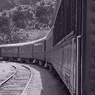 B&W Railroad by David Dehner