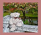 Teddy Bear by the Pond in Autumn by Beth Brightman