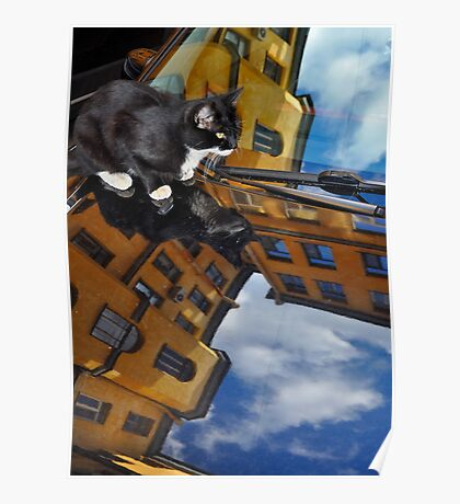 """City Life - """"3D Reflection"""" Poster"""