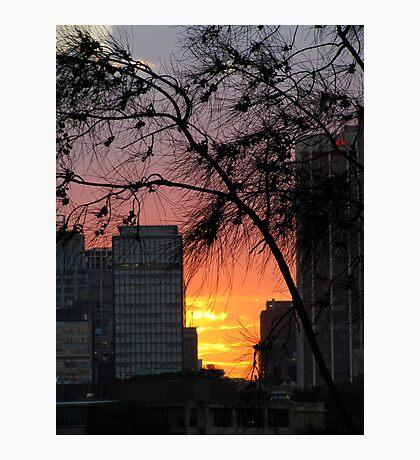 Sydney Sunset Photographic Print