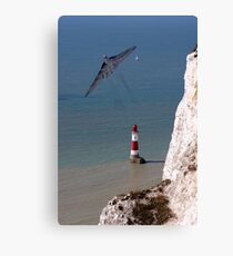 Vulcan Prowess Canvas Print