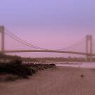 misty bridge by deegarra