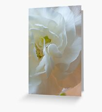 White Carnation Heart macro Greeting Card