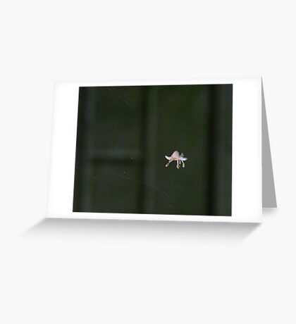 """""""Floating freely"""" Greeting Card"""