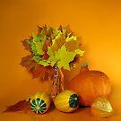Orange Still life  by JuliaPaa