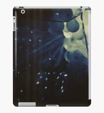 3845 iPad Case/Skin