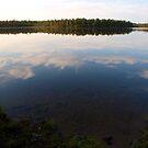 A see-through lake by Janne Keinänen