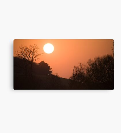 Sunset over hampshire cornfield, England Canvas Print