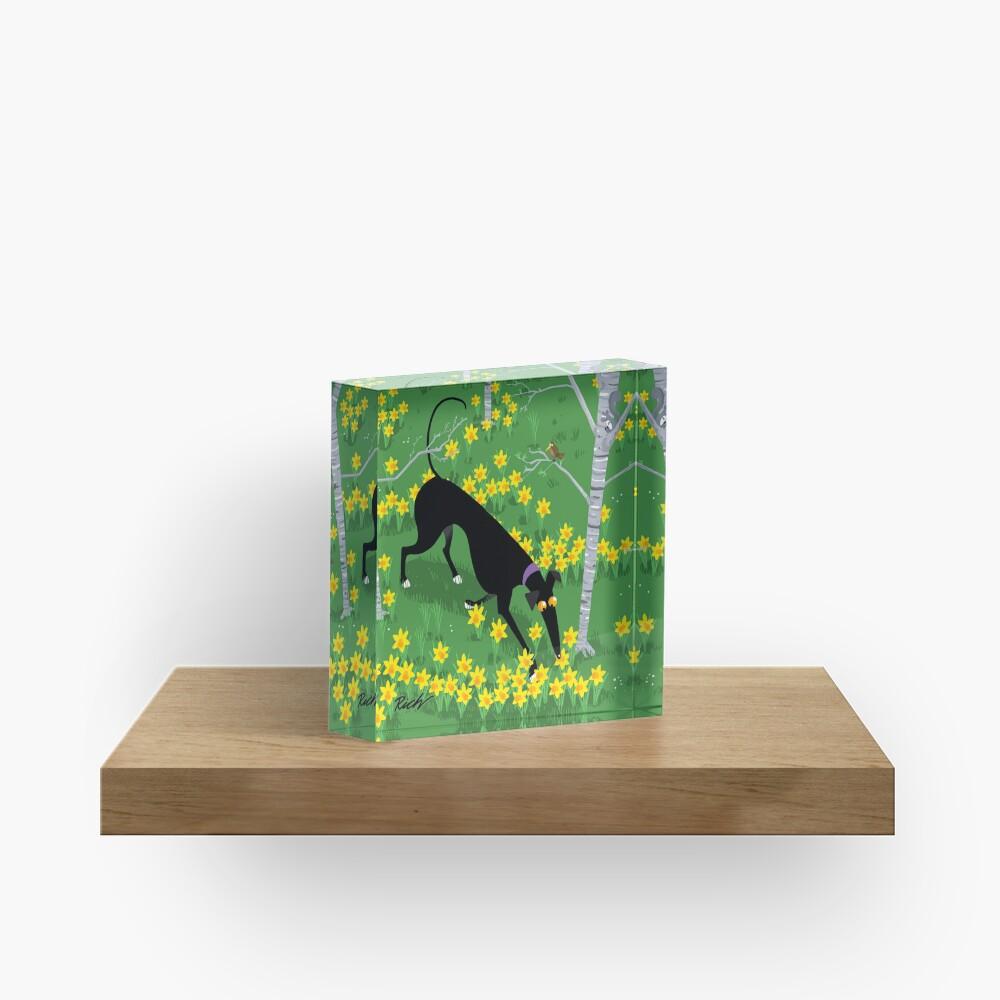 Daffodil Hound Acrylic Block