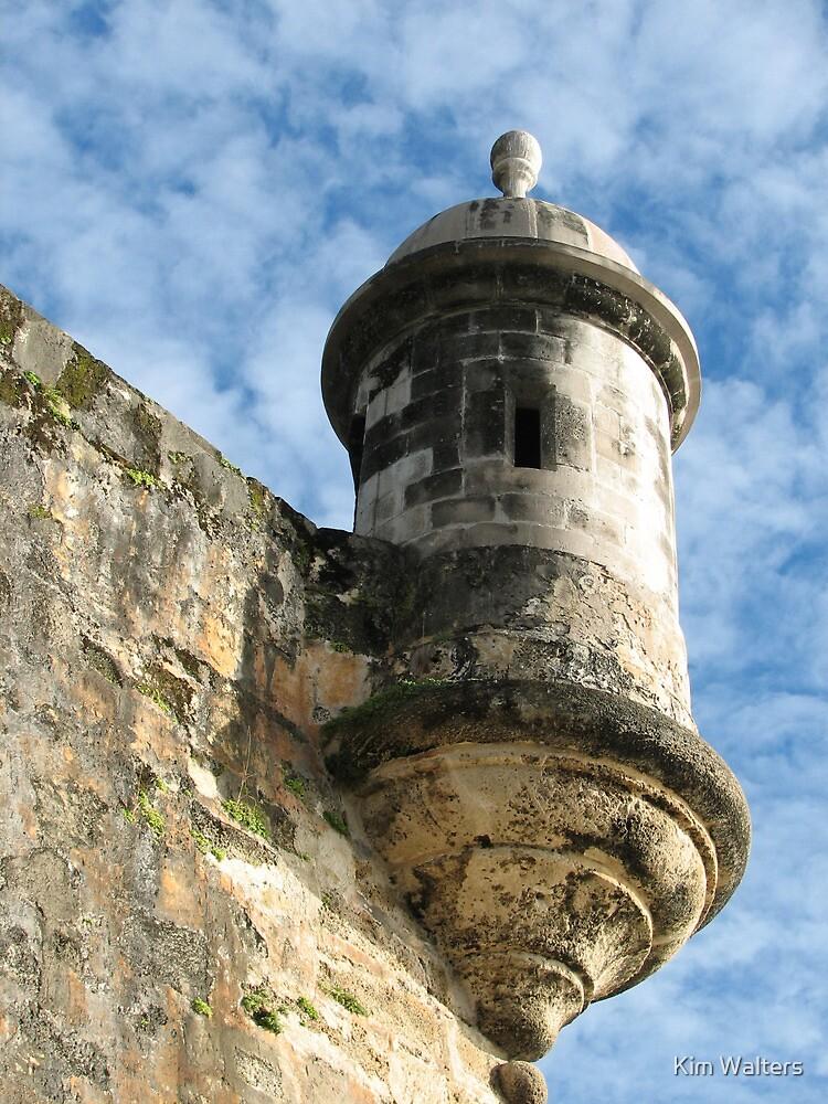 Fort San Felipe de Morro in Puerto Rico by Kim Walters