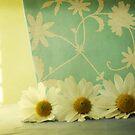 ...always daisy-time by Cordelia