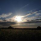 Good Morning Sunshine by Lolabud
