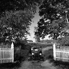 Down memory lane by Jason  Burris
