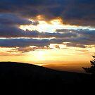 'Golden Sky' by Scott Bricker