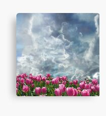 Resubmit of Clouds and Tulips Canvas Print