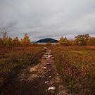 Moods Of Autumn by CalleHoglund