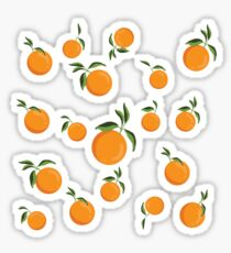Fresh Picked Oranges Sticker