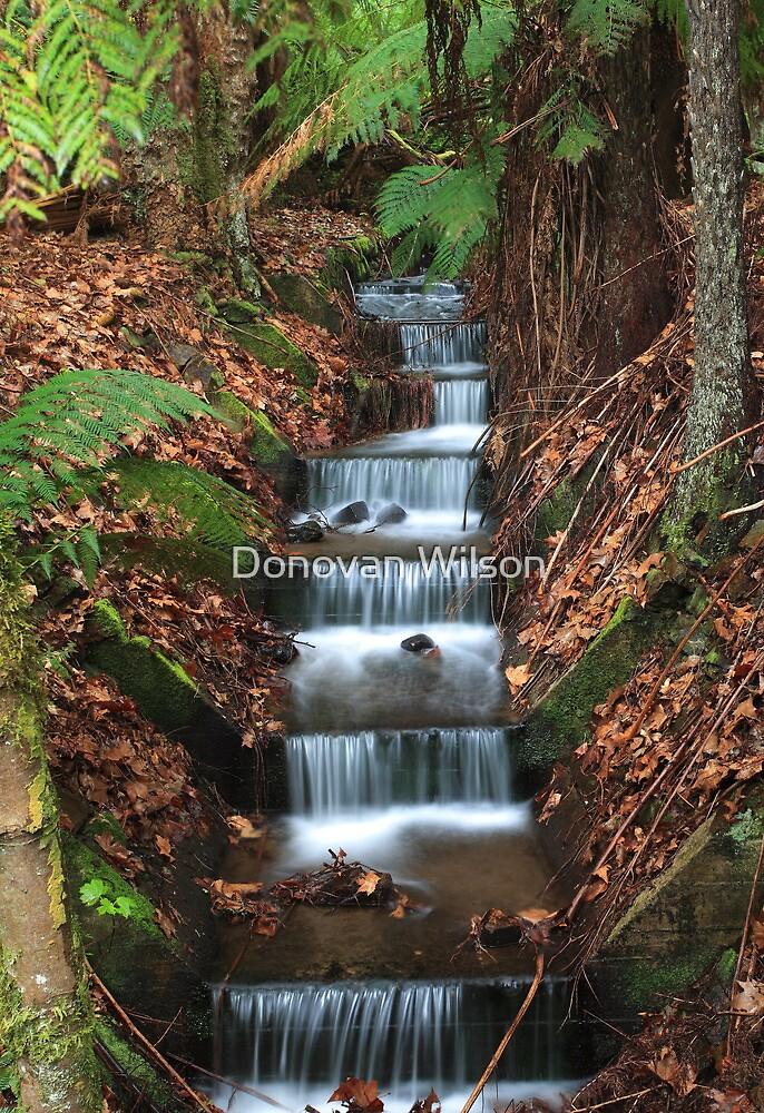 Mallesons Glen by Donovan Wilson