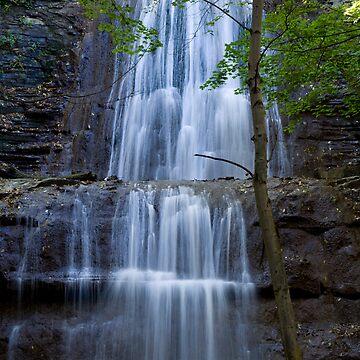 Sherman Falls by GailDouglas
