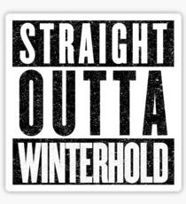 Adventurer with Attitude: Winterhold Sticker