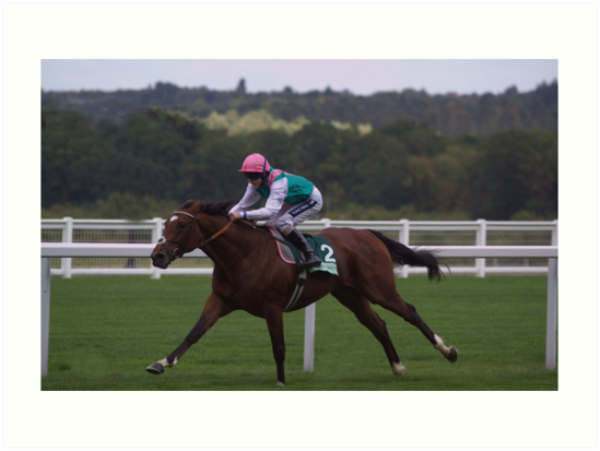 Frankel Stretches Out by lucretia