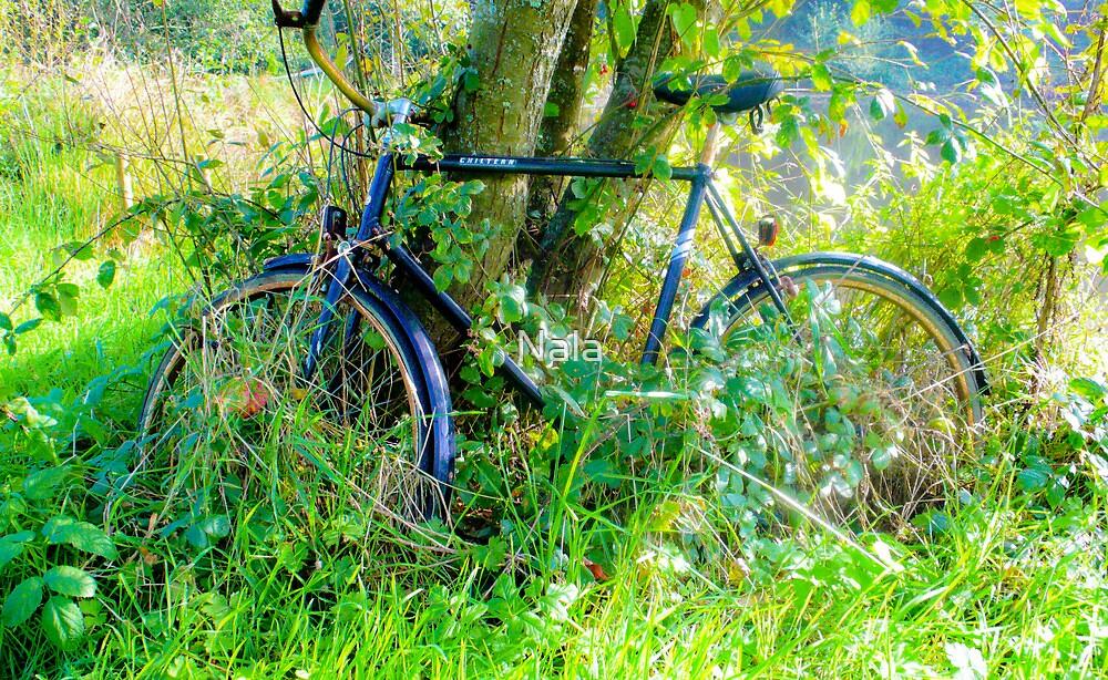 Commando bike by Nala