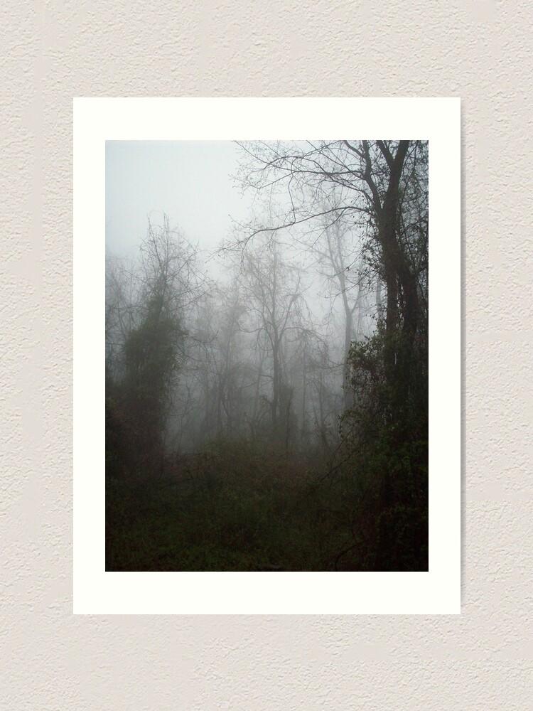 Alternate view of Misty Forest Art Print
