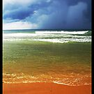 Poovar Beach, Kerala, India by Rishabh Sharma
