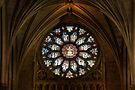 Cathedral Window by Adrian Evans
