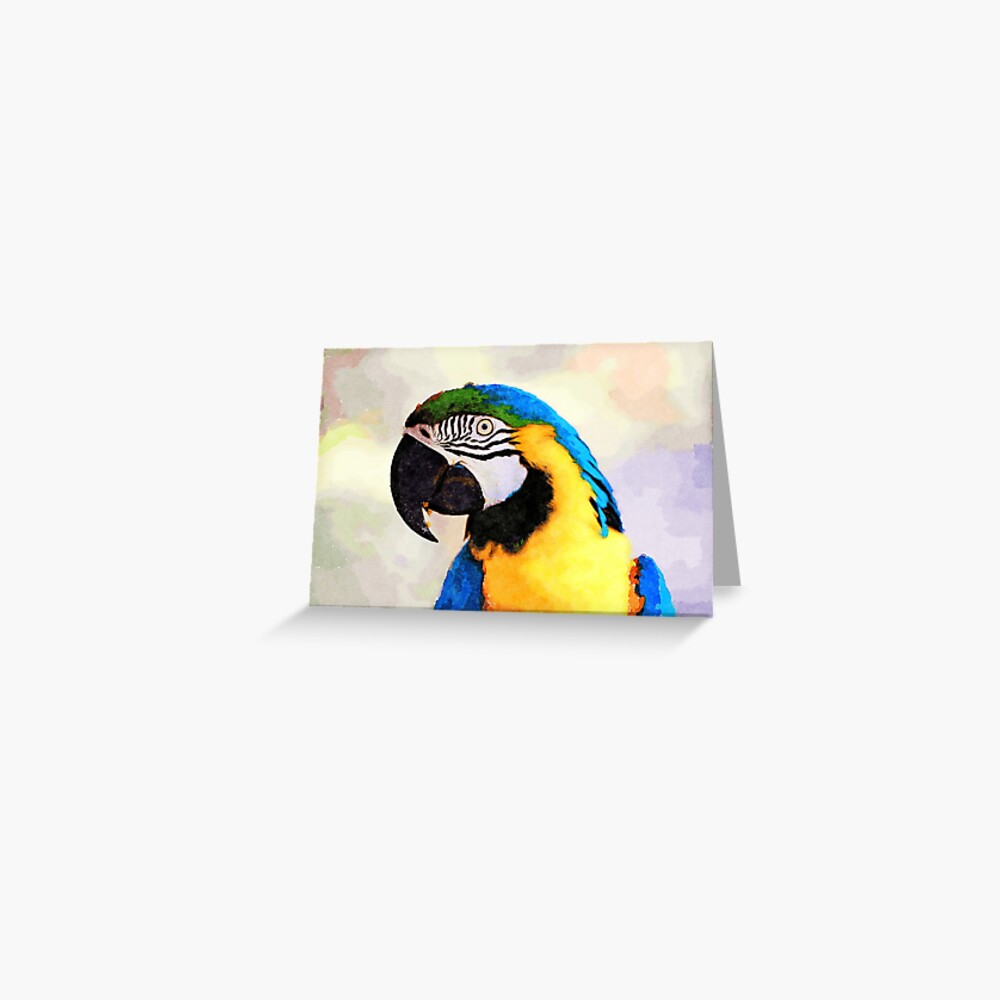 Colourful Parrot Greeting Card