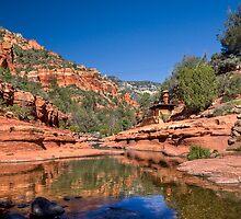 Oak Creek Canyon by Sue  Cullumber