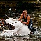 Gypsy Horse Fair by Brian Tarr