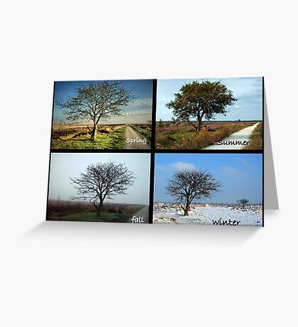 Tree and Seasons Change Greeting Card