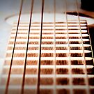 Music Strings by amimages
